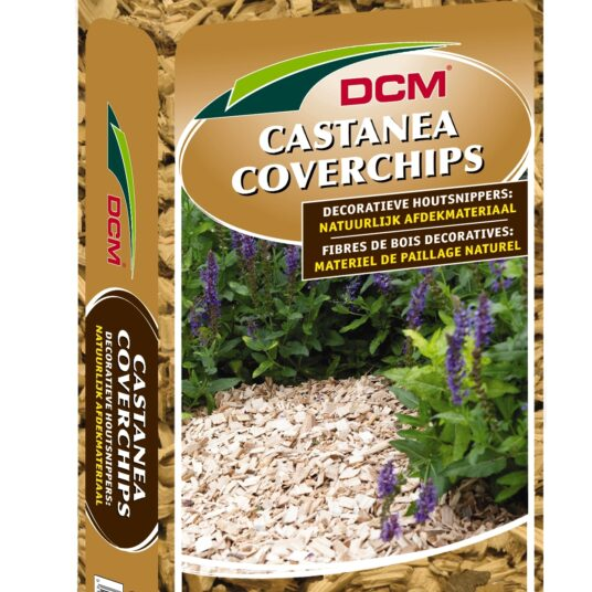 CASTANEA COVERCHIPS